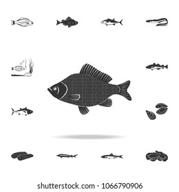 perch icon. Detailed set of fish illustrations. Premium quality graphic design icon. One of the collection icons for websites, web design, mobile app on white background