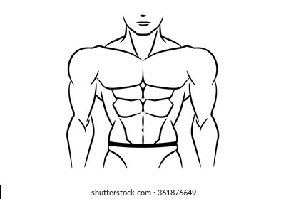 Perfect abdominal muscles is six pack of bodybuilder. This illustration in linear style on isolated.
