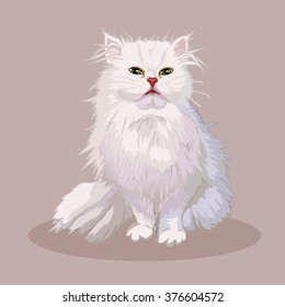 Persian cat. Favorite pet breed. Lovely fluffy kitten with green eyes. Realistic vector illustration.