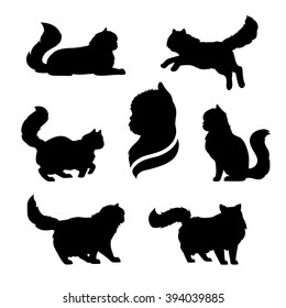 Persian cat icons and silhouettes. Jumping running sitting lying standing going cat. Set of vector black and white pets. Animals outlines. Tattoo art. Isolated fluffy kitten. Cat posing.