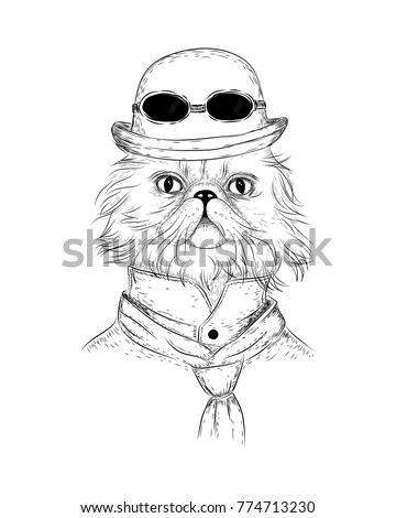persian cat ste unk retro style vector stock vector royalty free  persian cat in ste unk or retro style vector character cat in retro bowler hat