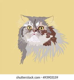 Persian fluffy cat is most beautiful cat in the world. Vector 10.