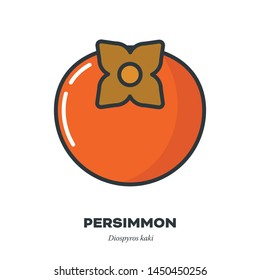 Persimmon or kaki fruit icon, outline with color fill style vector illustration,