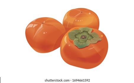 白い背景に柿のイラスト