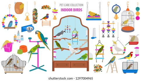 Pet appliance icon set flat style isolated on white. Birds care collection. Create own infographic about parrot, parakeet, canary etc . Vector illustration
