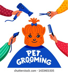 Pet grooming concept. Happy lap-dog and hands with comb, hair dryer, scissors and haircut clipper on white background. Dog care, grooming, hygiene, health.