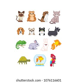 Pet set. Cat, dog, aquarium fish, parrot and turtle isolated vector illustration pixel art 80s style icons. Stickers and embroidery design. Logo design for pet shops, mobile applications.