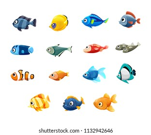 pet shop, fish, tropical fish, aquarium fish, clown fish, sardines, goldfish, sailboat