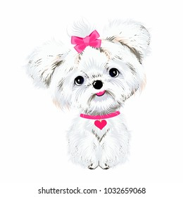 pet sitting dog white Maltese with pink bow and heart background vector