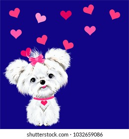 pet sitting dog white Maltese with pink bows and hearts on a blue background vector