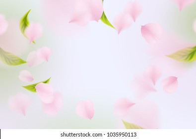 Petals of rose, green leaves isolated on light blue sky background. Realistic pink sakura falling petals pattern. Flying blossom cherry flower elements for spring advertising design.