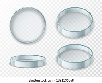 Petri dish. Realistic 3d empty glass lab cup in different angles, test container for experiments, laboratory vessel, scientific analysis. Medical pharmacy or biology equipment glassware, vector set