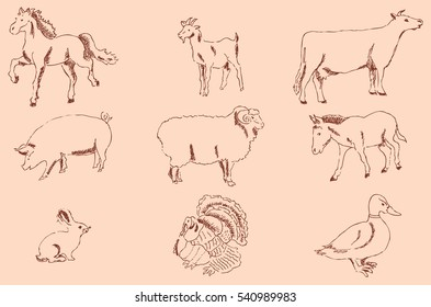 Pets Farm. Pencil sketch by hand. Vintage colors. Vector