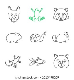 Pets linear icons set. German Shepherd, frog, raccoon, hamster, snail, chinchilla, frog, lizard, goldfish, British cat. Thin line contour symbols. Isolated vector outline illustrations