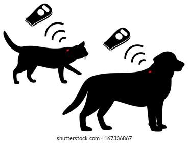 pet's microchips