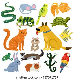 Pets set of colorful icons with cat and dog, fishes, rodents, parrots and reptiles isolated vector illustration