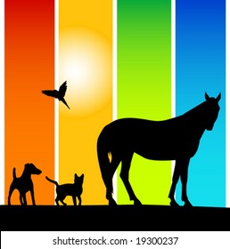 pets silhouettes on colorful background