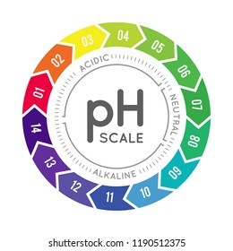 pH meter for measuring acid alkaline balance. Vector infographics in the circle form with pH scale