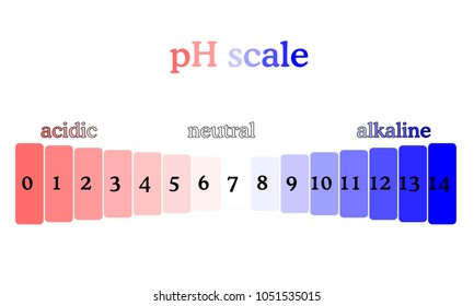 pH scale diagram with corresponding acidic or alcaline values. Litmus paper color chart. Colorful flat style illustration isolated on white background.