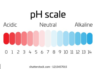 pH scale. Indicator of pH value expressing rate of acidity or basicity in chemistry.