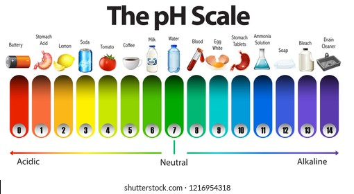 A pH scale on white background illustration