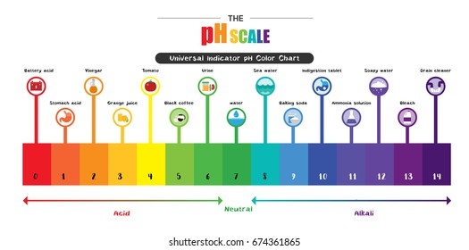 Ph Scale Images Stock Photos Vectors Shutterstock