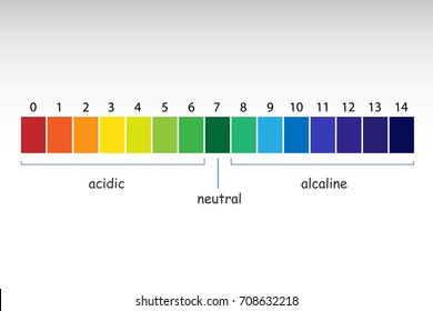 pH scale value. Chart ph alkaline and acidic scale