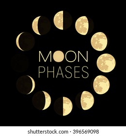 the phases of the moon light vector