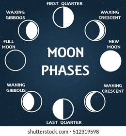 The phases of the moon. Vector illustration