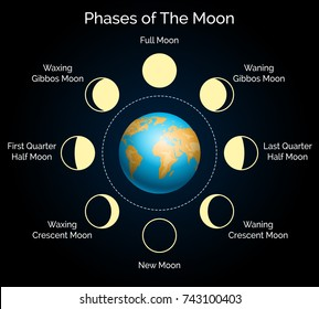 Phases of the moon vector illustration. Earth and lunar phase set with shadow and moonlight infographic
