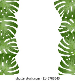 Philodendron Monstera Leaf Border isolated on White Background. Vector Illustration.