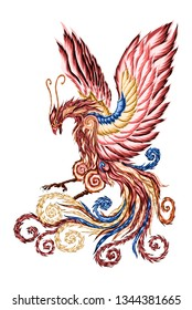 Phoenix bird illustration vector color art, tattoo phoenix illustration, Phoenix wingspan