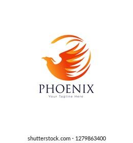 phoenix bird logo - Vector