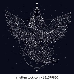 Phoenix, fire and ashes, rebirth, mystic bird, print, constellation, star, space, vector