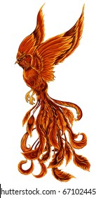 Phoenix Fire bird illustration and character design.Hand drawn Phoenix tattoo Japanese and Chinese style,Legend of the Firebird is Russian fairy tales and it is creature from Slavic folklore.