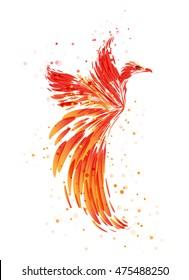 Phoenix - Mythical Bird on white