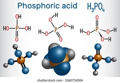 Phosphoric acid (orthophosphoric acid, H2PO4) is a mineral and weak acid molecule. Structural chemical formula and molecule model. Vector illustration