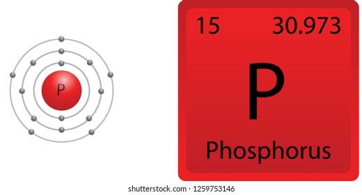 Phosphorus Atom Shell
