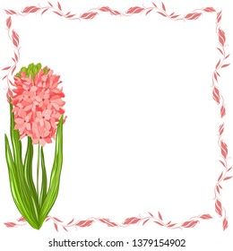photo frame with hyacinth pink