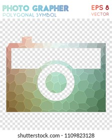 Photo polygonal symbol, admirable mosaic style symbol. Uncommon low poly style, modern design.