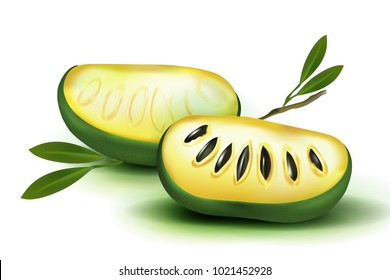 Photo Realistic 3d vector pulp and seeds with leaves isolated on white background papaya papaw fruit (asimina triloba), custard apple, or pawpaw plant Carica papaya, genus Carica