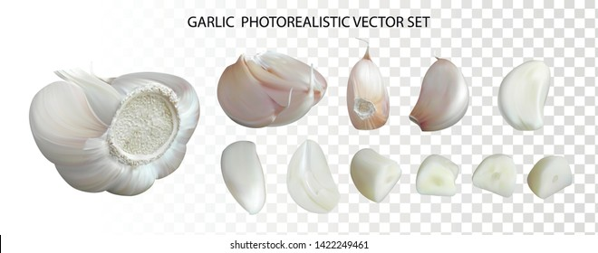 Photo realistic garlic with segments, peeled cloves, chopped slices, isolated on transparent background. 3d quality realistic vector icon set for menu illustration.