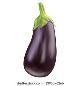 Photo realistic vector eggplant transparent background (mesh technique)