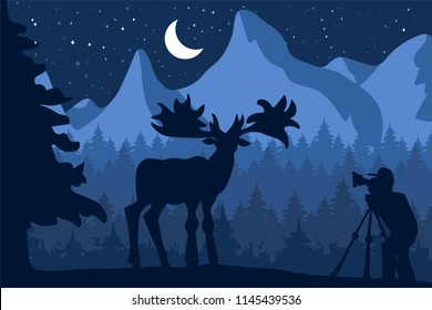 Photographer photographs deer in nature. Forest and Mountains Wildlife Panorama. Natural night scene with moon. Travelling videographer. Vector