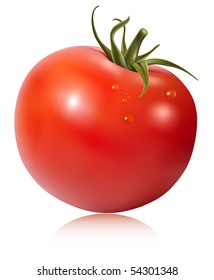 Photo-realistic vector illustration. Tomato with water drops.