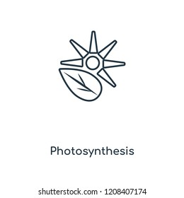 Photosynthesis concept line icon. Linear Photosynthesis concept outline symbol design. This simple element illustration can be used for web and mobile UI/UX.