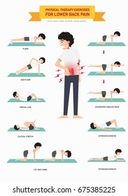 Physical therapy exercises for lower back pain infographic,vector illustration.