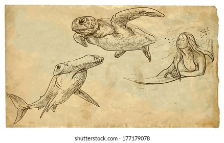 Picture of Australian life: Surfing woman (under the sea surface) sank between hammerhead shark and turtle. Vector hand drawn illustration (drawings on vintage paper in the bottom layer).
