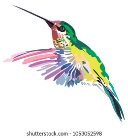 Picture of a colored bird Vector