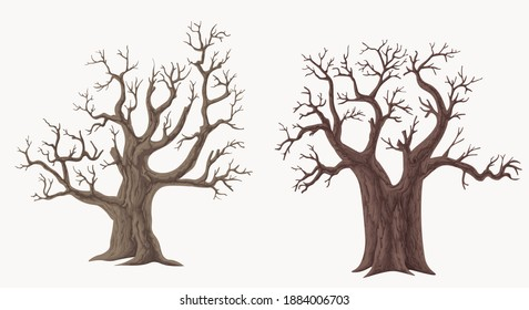 Picture set of big trees without leaves , dead old trees on ,White background ,vector illustration